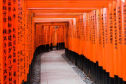 日本人のルーツに関する新研究に海外興味津々!(海外の反応)