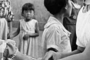 韓国人「韓国人のコロナ免疫力が高いのはBCGワクチンのお蔭?」BCGにコロナ退治効果がある可能性→「それ日本製じゃ無いのか?」 韓国の反応
