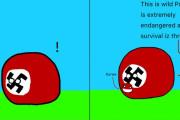 【枢軸国】イタリアは何を捕まえた?【ポーランドボール】