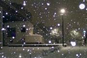 韓国人「大雪を楽しんでいる日本人をご覧ください」→「ヤバすぎwwwww」「半地下なのかな・・・?」