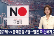韓国「輸出規制vs不買運動…日本へ2倍の損害を与え韓国の勝利!」→韓国人「日本は影響無しだよ…」=韓国の反応