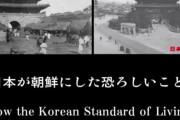 世界が日本の嘘に反対してる!証拠あんの?ネットだよググれカス!韓国の嘘 日本がした残虐行為 韓国人はいつも嘘つき 海外の反応
