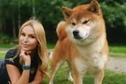 海外「なんて素敵な犬なの!」日本の代表的な犬種、柴犬。その特徴や魅力を紹介した動画に反応続々!