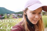 海外「素敵な景色、素敵な会話!」岐阜県の乗鞍岳登山&白川郷散策動画に注目