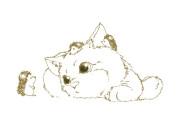 日本の「いまだにハリネズミに触れてない猫」が可愛すぎる!【タイ人の反応】