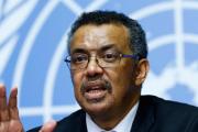 WHOテドロス事務局長「コロナウイルスを政治化しないで」 (海外の反応)