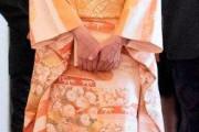 【画像あり】韓国人「日本皇室の佳子姫が美しい!」佳子様が和服を着てオーストリアを訪問! 韓国の反応