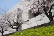 日本の裁判所がいじめっ子に命じた損害賠償額に海外びっくり仰天(海外の反応)