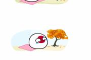 【日本】秋の伝統【ポーランドボール】