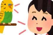 海外「高齢だからね!w」日本の菅総理を迎えたバイデン大統領がレイシストだと米国が大騒ぎ