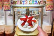 海外「こんな風に景品が置けるのは日本だけだ!」日本のゲームセンターでゲットできる景品のお菓子はこんなにあった!