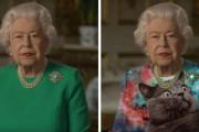 コロナ演説をしたイギリス女王、緑の服を着たせいでコラ画像大会にwwww