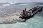 海外「なんて愚かな」日本の貨物船が座礁した理由に海外びっくり仰天!(海外の反応)