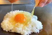 海外「日本の炒飯をアメリカに歓迎したい」シンプルなチャーハン料理動画が外国人に大人気な模様