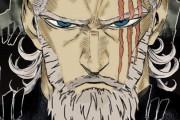 【ワンパンマン】海外ファンが描いた老けたキングがかっこよすぎる….【海外の反応】