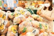 【韓国の反応】毎日食べてるタマネギ、日本の種だった…韓国の種に変えるや値段がガクン