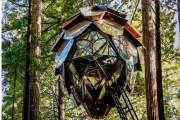 松ぼっくりの樹上の家:タイニーハウス 海外の反応