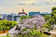 韓国人「日本の熊本というところを知っている人はいるか?ちょっと聞きたいことがあるんだが」